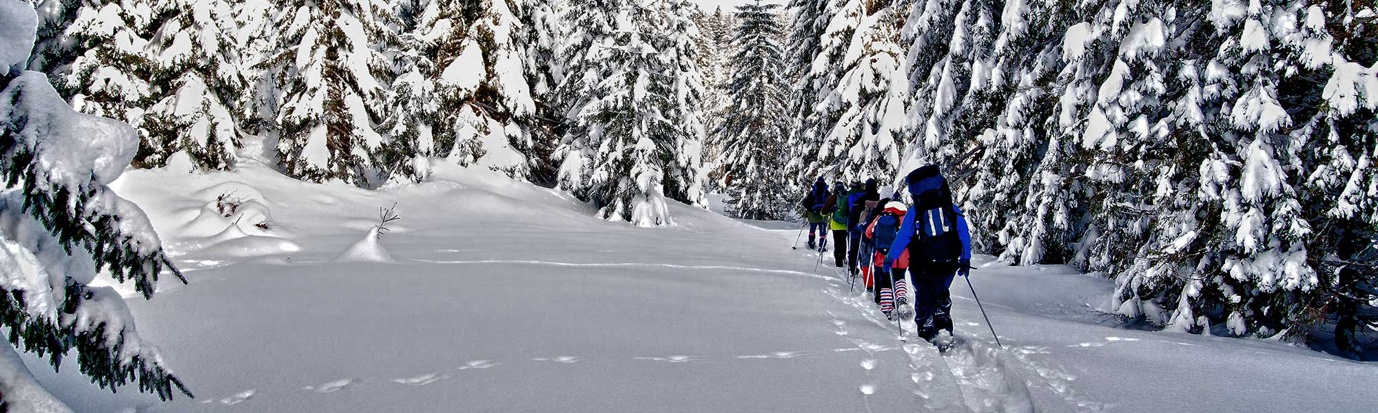 A family snowshoeing in Canmore